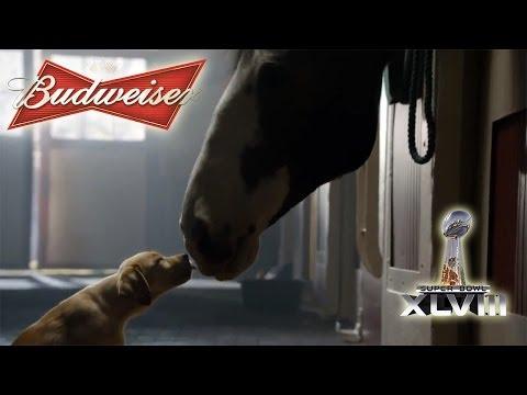 Budweiser: Puppy Love